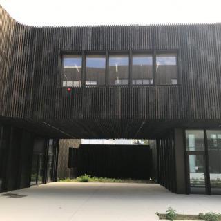 Réalisation construire bois Bardage Claire - Voie douglas autoclavé Classe 3 gris - Ile de France